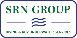 Logo SRN Group
